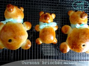 Read more about the article Oursons briochés (bien dodus)
