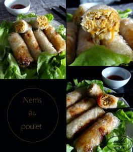 Read more about the article Nems au poulet